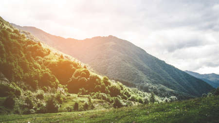 panorama of beautiful springtime landscape in mountains. Grassy field and rolling hills. Standard-Bild