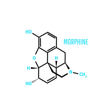 Structural chemical formula and molecule model Morphine on white background. Vector illustration