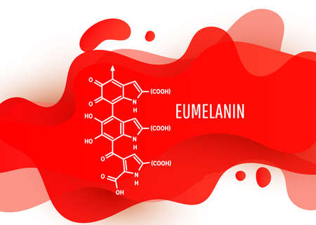 Eumelanin chemical molecule structure with a red liquid fluid gradient shape with copy space on white background