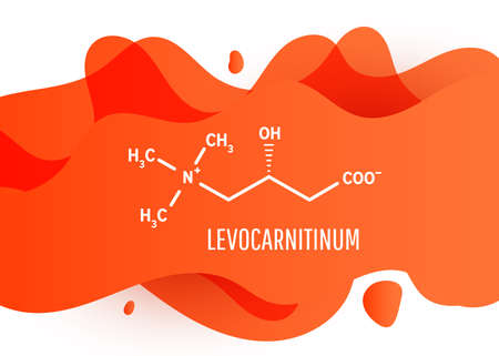 Levocarnitinum structural chemical formula with orange liquid fluid gradient shape with copy space on white background