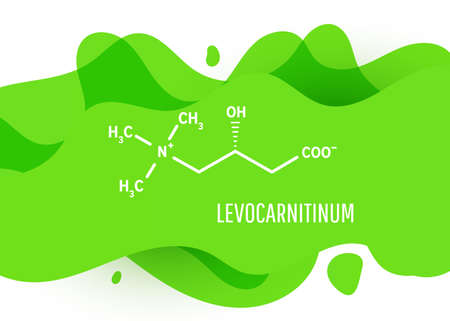 Levocarnitinum structural chemical formula with green liquid fluid gradient shape with copy space on white background