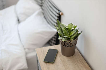 Black smartphone on the nightstand. Green plant in a flower pot on the table in the bedroom against the background of the bed Reklamní fotografie