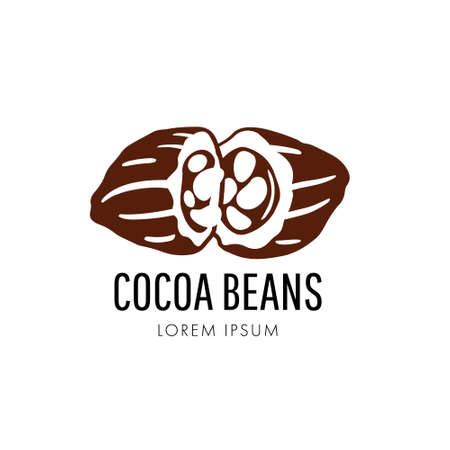 Chocolate cocoa beans  . Brown cocoa beans vector isolated on white background