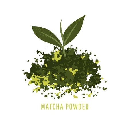 Matcha powder and green tea leaf isolated on white background. Vector illustration, minimal style Çizim