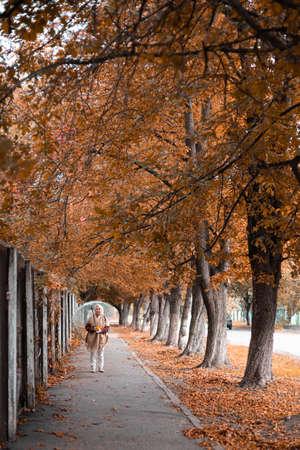 Elegant beautiful woman walk in an autumn park with an umbrella