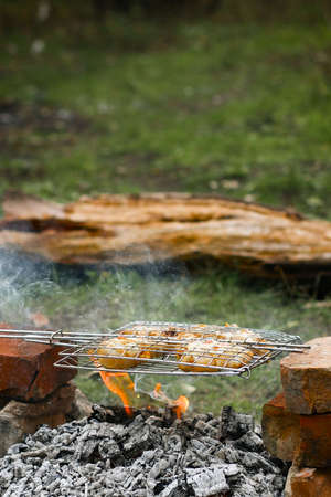 Slices of fried chicken baked on the coals of a fire in the forest. Campfire