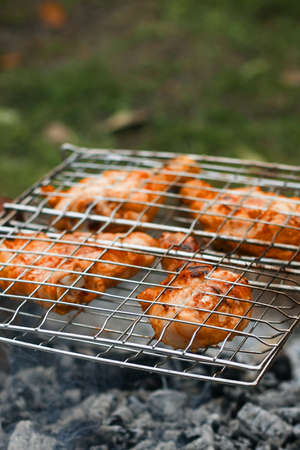Pieces of fried chicken shank baked on the coals of fire in the forest. Campfire, close up