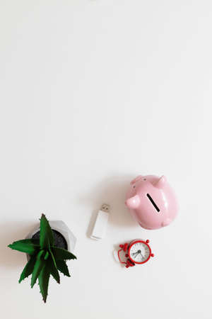 Freelance office workplace work concept. Red notebook, nature plant, alarm clock and piggy bank on white minimalistic background with copy space. Business, finance, investment, saving and corruption concept.