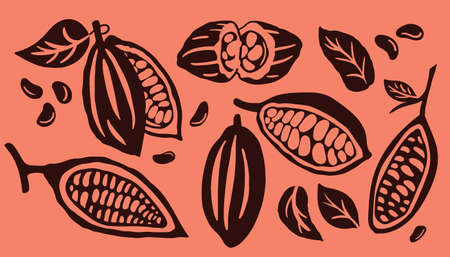 Cocoa pod and many raw beans set isolated on a orange background. Organic cocoa beans template. Vector illustration.