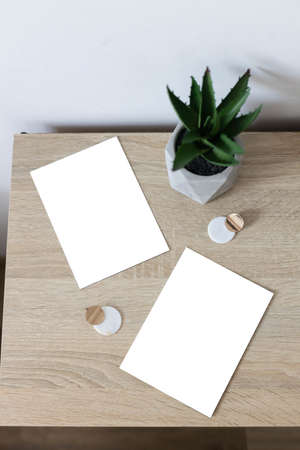 Two white empty paper blank frame mockup on home wooden table. Gconcrete flowerpot with succulent plant. White wall background 版權商用圖片