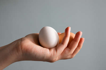 Female hand holding Easter brown chicken egg isolated on grey background Banque d'images