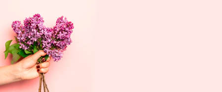 Womans hand with a bouquet of colorful Blooming violet lilac flowers against pink wall on background. Banque d'images