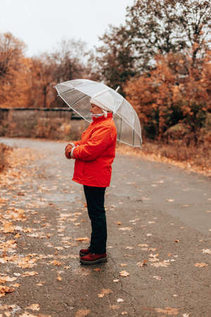 Rainy weather concept. Woman in a red jacket walks along wet rainy streets under transparent umbrella. Back view with copy space