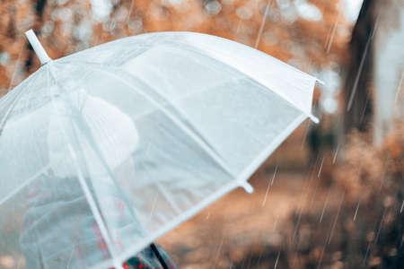 Wet transparent umbrella in rainy autumn weather. Rainy weather concept.