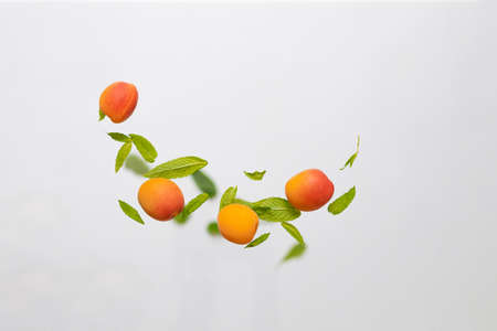Random flying in the air green mint leaves with juicy ripe apricot fruits isolated on white background