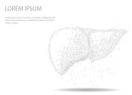 Imagen abstracta de un órgano interno del hígado humano