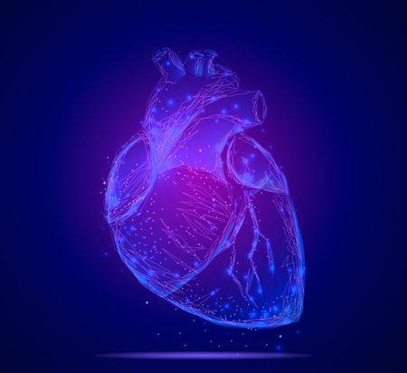 heart illustration Vectores