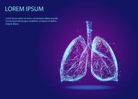 menschliche Lunge