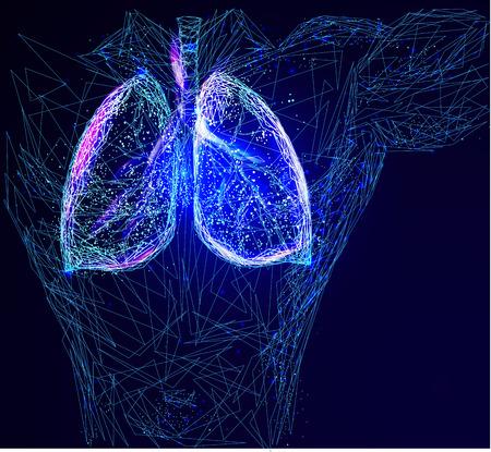 polmoni umani Vettoriali