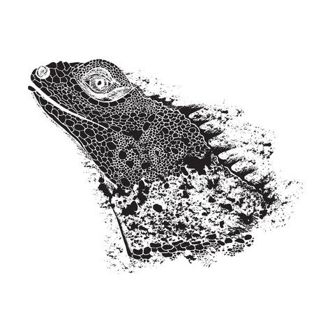 La tête de l'iguane. Reptiles. Illustration vectorielle isolée. Parfait pour la conception de chemises ou de t-shirts, le logo de la marque, le tatouage et la décoration