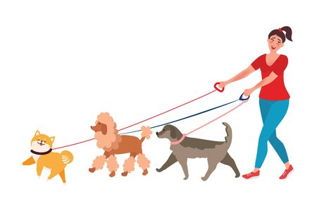 The girl walks a few dogs. Professional dog Walker. Vector illustrations unusual professions