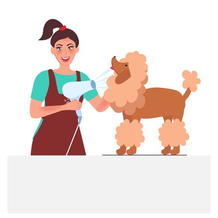 Master groomer blow-dry the dog's hair. Care and hygiene of Pets in the zoo. Vector illustration