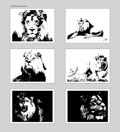 Six vector posters with traced lion heads. Ansi A format mockup. EPS 10
