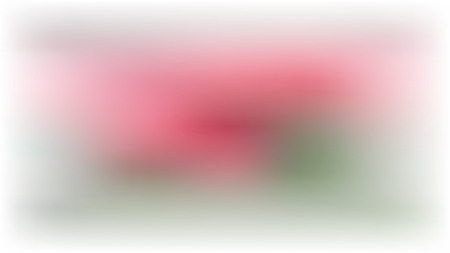Vector white blur background with pink and green spots. Web banner Standard-Bild - 124649904