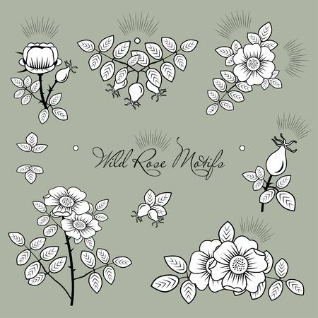 Rosehip motifs vector sketchy illustrations.