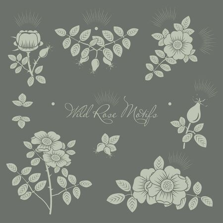 Rosehip motifs vector illustrations set for cards