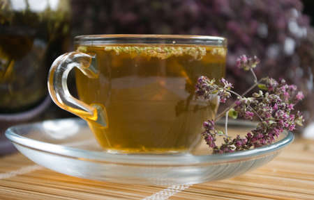 Curative tea with origanum Stock Photo - 3711557