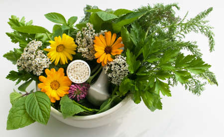 granules and herbs Stock Photo