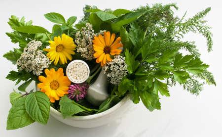 impregnated: granuli e erbe