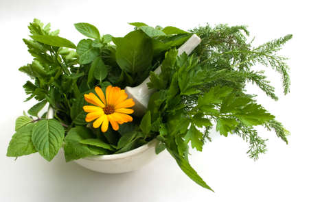 homoeopathic: granules and herbs Stock Photo