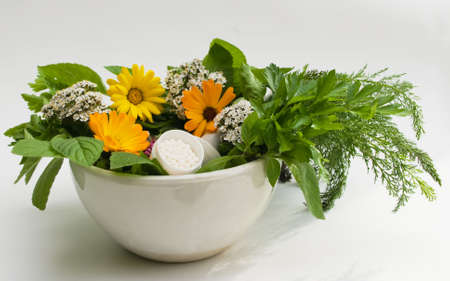 homoeopathic: the image granules and herbs Stock Photo