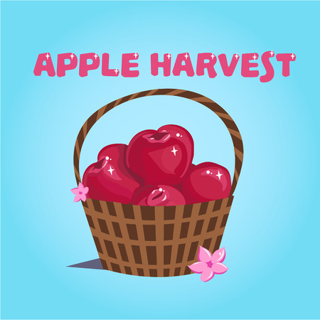 Coloful illustration with red apples in the basket. Apple harvest