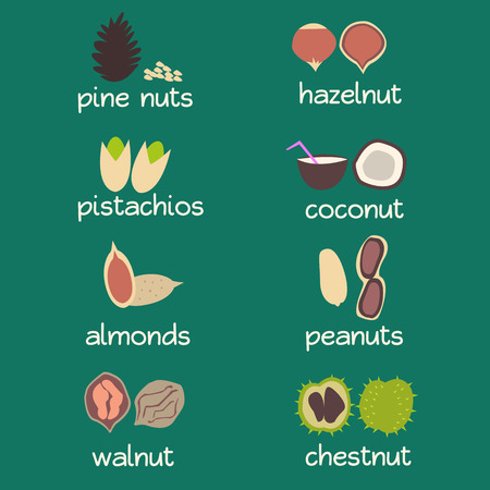 mixed nuts: Nuts icon set - nuts in shell. Flat vector illustration.