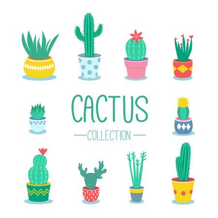 cactus cartoon: Cactuses and houseplants in pots. Vector cartoon illustration. Illustration