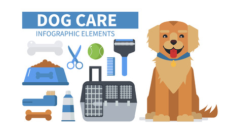 retriever: Dog care infographic elements. Vector illustration. Illustration