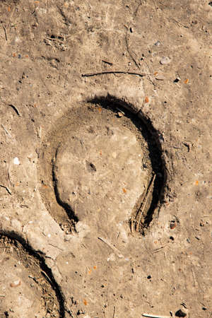 Horse trail on the ground. Imprint of a horseshoe horseshoe on the ground. Horseshoe footprint on ground, Imprint and textures. Horse foot in dirty ground. The traditional symbol of good luck, luck