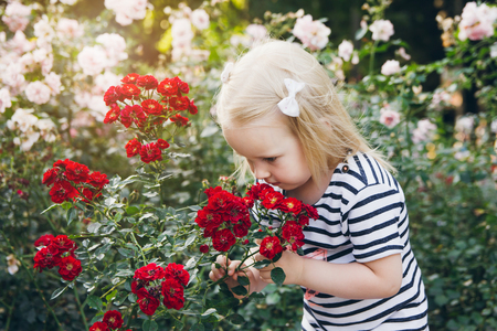Little girl smelling roses in a summer Park. The concept of family recreation. Toning.