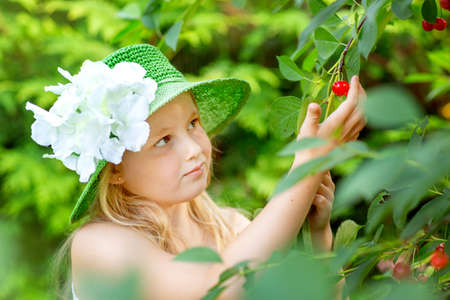 A beautiful little blonde girl plucks a cherry from a branch. Looks at the berry. Close up