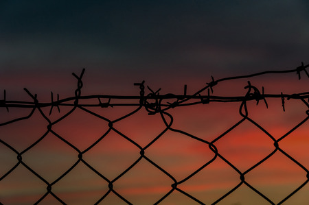 Steel mesh fence with barbed wire on top at sunset photo