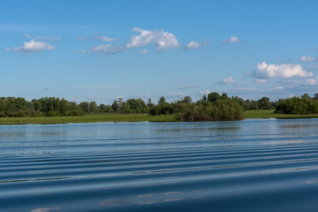 placid water: The picturesque landscape with green bushes, trees, meadows and clouds reflected in the water of the lake with a smooth surface and a small waves