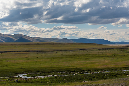 loam: Scenic view of the steppe, mountains and sparse vegetation on the background of blue sky and clouds Stock Photo
