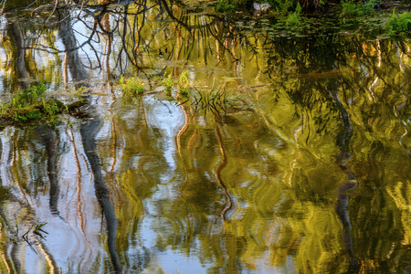 colorful water surface: Colorful abstract bright decorative background with ripples, waves and reflections on the surface of the water in the lake on a sunny day
