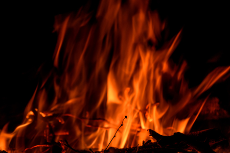 raging: Dry twig on the background of a large red and orange raging flame from a bonfire Stock Photo