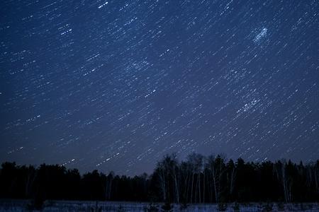 Paesaggio di notte con le tracce delle stelle nel cielo notturno sullo sfondo di una foresta oscura