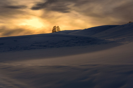 beautiful tree: Scenic winter view with mountains covered with snow, trees and snowdrifts on the background of the setting sun and the sky with clouds Stock Photo
