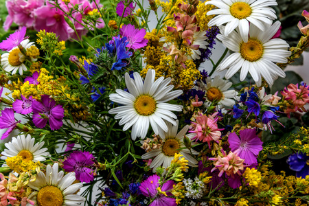 wildflowers: Beautiful bright floral background with colorful bouquet of different wildflowers Archivio Fotografico